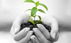 Proteger-l-environnement